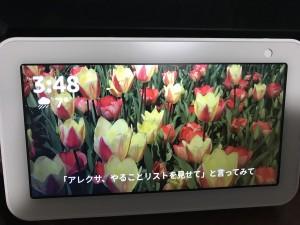 IMG_7884