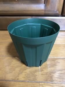 12cm プラ鉢